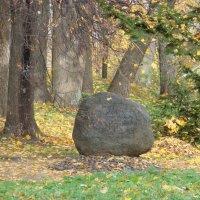 Лежачий камень :: Владимир Гилясев