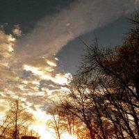 Солнечны пожар :: Лариника Кузьменко