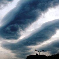 Небо хмурое, тучи мрачные... :: Лиса Алиса