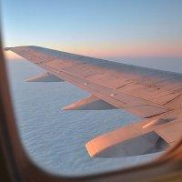 Полет на север :: Алексей Михалев