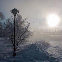 Морозное одиночество :: Андрей Шаронов