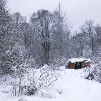 Кирпичный сарай, скорее остаток от бывшего владения жильцов :: Juliya Fokina