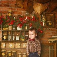 Маленький помощник Санты) :: Светлана Павлова