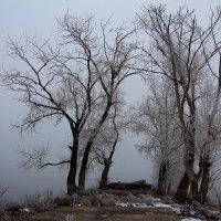 Туманный пейзаж :: Dr. Olver