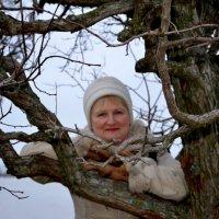 Спящее дерево :: Галина (Stela) Кожемяченко