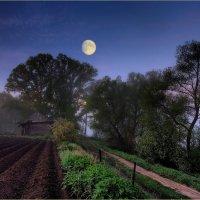 Утро на краю деревни :: Nikita Volkov