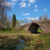 Чертов мост в усадьбе Василево :: Alexander Freydin
