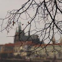 Вид на Пражский Град :: Снежана Деменова