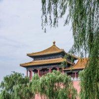 Пекин. Гугун :: Лариса Фёдорова