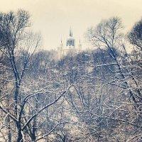 церковь владимирской божьей матери. с. быково :: Янина Пименова