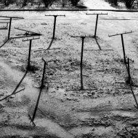 Кладбище дачников ... :: Роман Шершнев