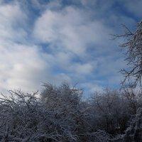 Небо опять голубое :: Геннадий Кульков