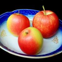 Волшебные яблоки :: Александр Бурилов