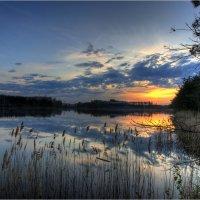 Вечером на лесном озере :: Nikita Volkov