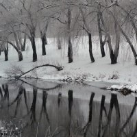 Зимний сон :: Алла Рыженко