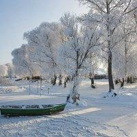 Зимний берег :: Наталья Цветкова