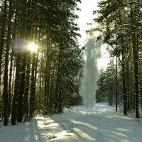 Мороз и солнце. :: Сергей Бурнышев