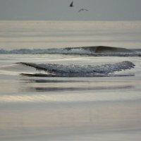 Волна. :: krealla 1