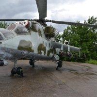 вертолет :: Елена Ганичева