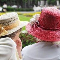 Соломенная шляпка :: Ирина Данилова