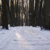Снежок :: Владимир Белов