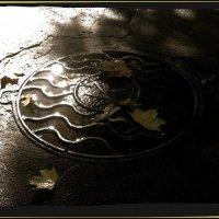 Блики,после дождя :: Natali