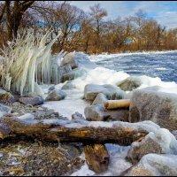 В ледяном одеянии :: Denis Aksenov
