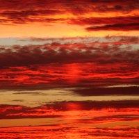 Огненный закат :: Екатерина Углова
