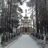 церковь Серафима Саровского. :: Сергей Кочнев