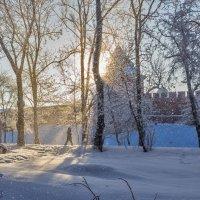Мороз и солнце :: Евгений Никифоров