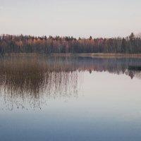 октябрь :: liudmila drake