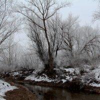 Зима :: Dr. Olver