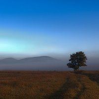 Одинокое.... :: Юрий Кущ