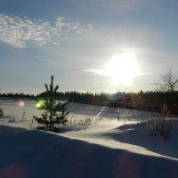 Зима :: Евгений Филатов