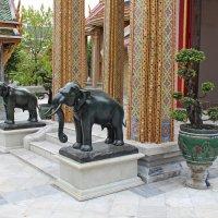 Таиланд. Бангкок. Слоники охраняют храм :: Владимир Шибинский