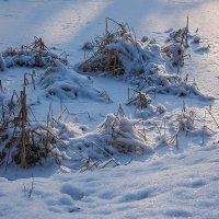 Зима пришла... :: Валентин Яруллин