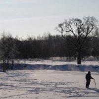 Зимой на речке. :: Андрей Зайцев