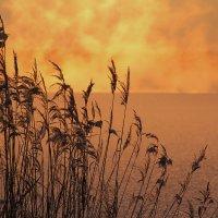 Солнечный старт 3 :: Юрий Морозов