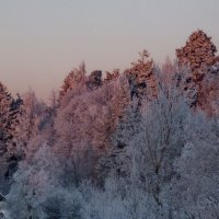 морозное утро 2 :: Юрий Бондер