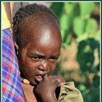 Дитя Африки :: Евгений Печенин