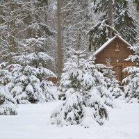 У леса на опушке жила Зима в избушке... :: Ольга Рыбина