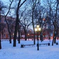 Фонари зажгли :: Николаева Наталья