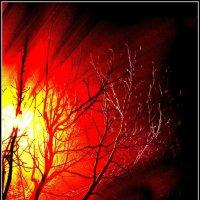 ночные оттенки фонаря. :: Ханпаша Джаватханов