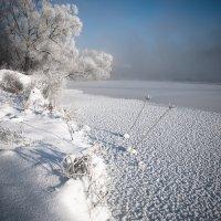 Морозное утро :: Анатолий 71
