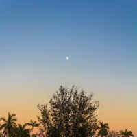 Под луной при свете дня :: Павел Белоус