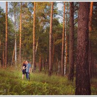 в лесу... слушали стрекозу... :: Татьяна Соловьева