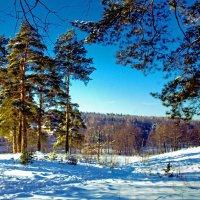 Мороз и солнце !!!! :: Viacheslav Birukov