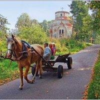 Деревенское такси. :: Роланд Дубровский