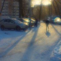 Зимняя жизнь :: Игорь Герман