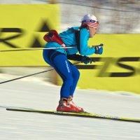 Лыжница :: Александр Павленко